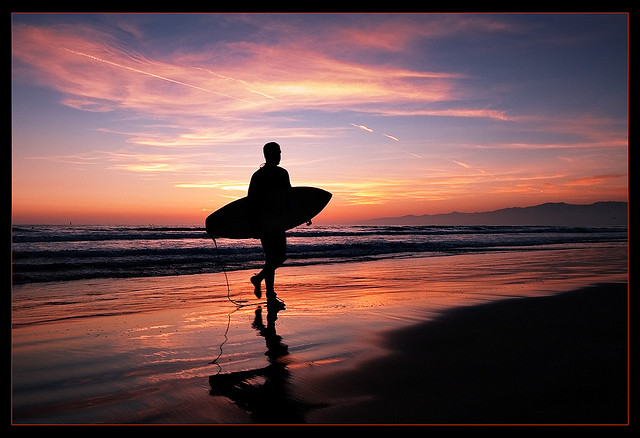 Surfing and Self Education