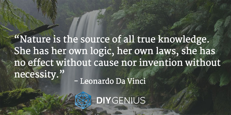 """Nature is the source of all true knowledge. She has her own logic, her own laws, she has no effect without cause nor invention without necessity."" - Leonardo Da Vinci (Quote)"
