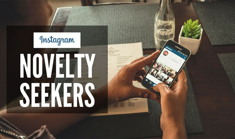 Instagram Novelty Seekers