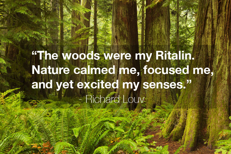"""The woods were my Ritalin. Nature calmed me, focused me, and yet excited my senses."" - Richard Louv Quote, from Last Child In The Forest"
