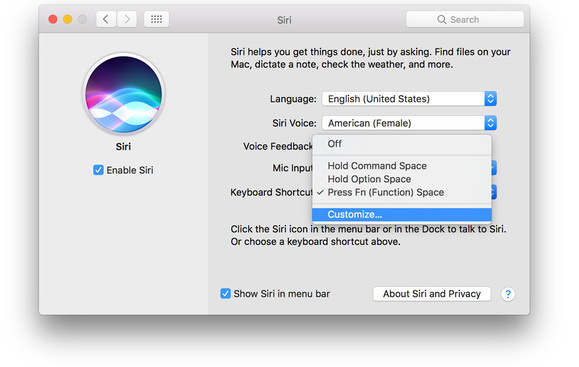 Siri Cuustomize Shortcuts