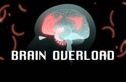 Digital Brain Overload