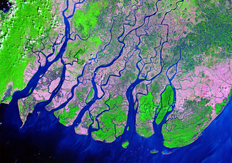 Ayeyarwady River Delta