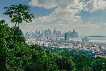 Panama City Nature View