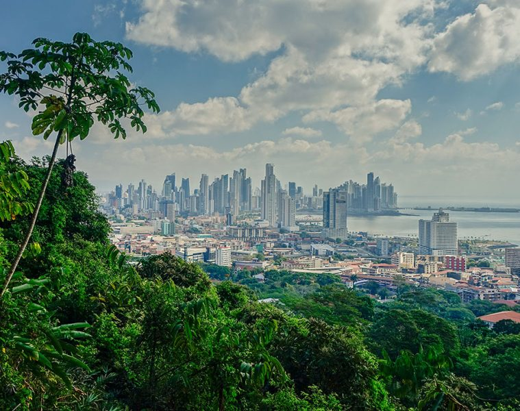 Panama City Nature View
