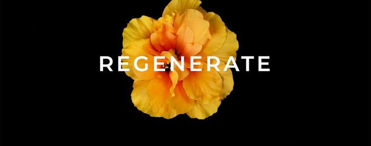 Regenerate Documentary