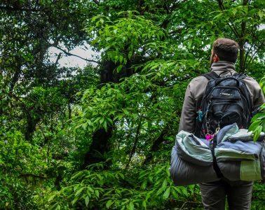 Ecotourism Travel Documentaries