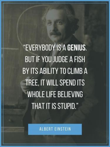 Albert Einstein Genius Quote Poster