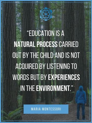 Maria Montessori Education Experiences In The Environment Quote Poster